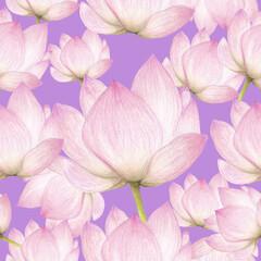Seamless pattern of lotus flowers