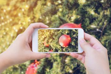 Taking photo of Christmas decoration on christmas tree