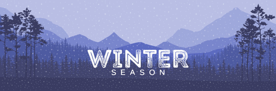 Winter sale words on the beautiful Chrismas flat Winter holidays landscape background with trees, snowflakes, falling snow.