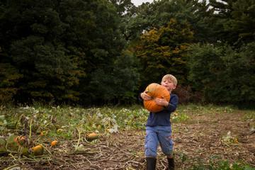 Boy carrying a pumpkin in a field