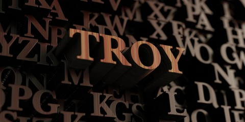Troy - Wooden 3D rendered letters/message.  Can be used for an online banner ad or a print postcard.