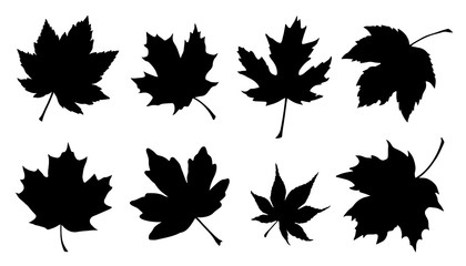 maple leaf silhouettes Wall mural