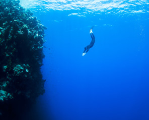 Freediver moves underwater along coral reef