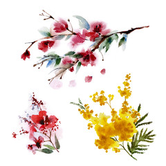 Set of three flowering branches, watercolor