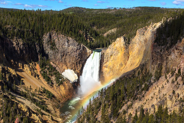 River and yellowstone waterfall. Wyoming. U.S
