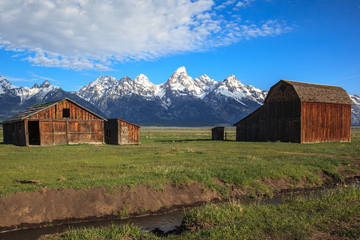 Teton mountains viewed from Mormon Row