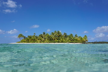 Pristine tropical island with turquoise water seen from the sea surface in the lagoon, atoll of Tikehau, Tuamotu archipelago, French Polynesia, Pacific ocean