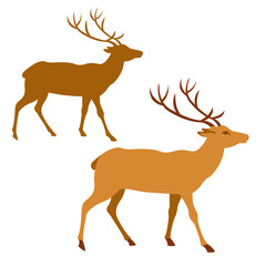Deer vector illustration style Flat set