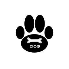 Dog paw on white background.