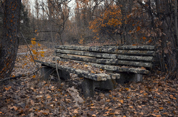 Autumn park in the city of Pripyat