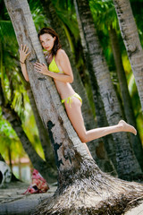 Tropical Model