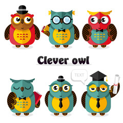 Clever owl cartoon characters set