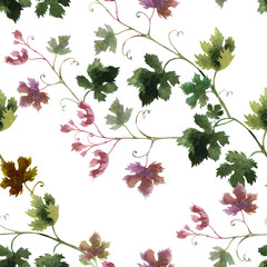 Seamless pattern of grape branches, watercolor
