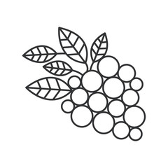 Grapes icon. Fruit healthy organic fresh food theme. Isolated design. Vector illustration