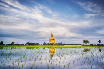 Big gold buddha statue wat muang