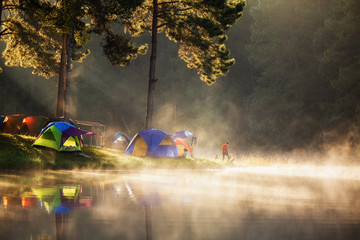 Wall Murals Reflection Pang ung park and Morning in forest with camping in the mist