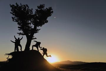 Doğada Takım Ruhu & Birliktelik & Dayanışma