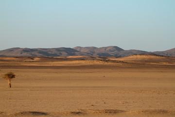 Die Wüste Sahara im Sudan in Afrika