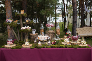 Wedding cakes desserts and sweets in the candy bar. Sweets at th