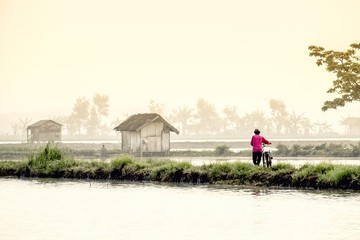 Man walking with his bike along the edge of the rice fields, to start work in the morning
