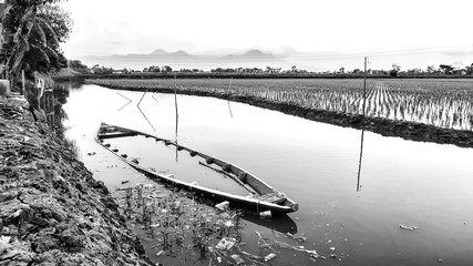 Black and white photo of abandoned small boat in the edge of rice field, half drowning