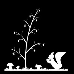 Silhouette of the squirrel in the grass.