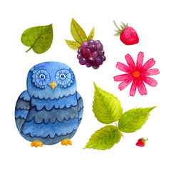 Watercolor cute forest owl with strawberries, blackberries, flower, leaf and strawberries