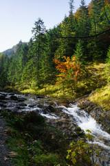 mountain river in autumn season