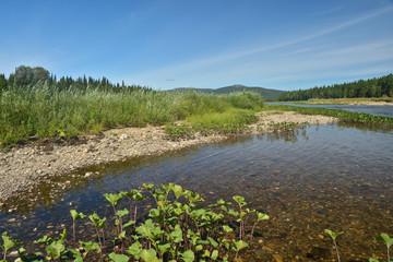 Summer river landscape in the Northern national Park.