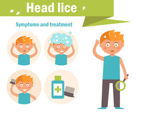 Head lice. Symptoms and treatment