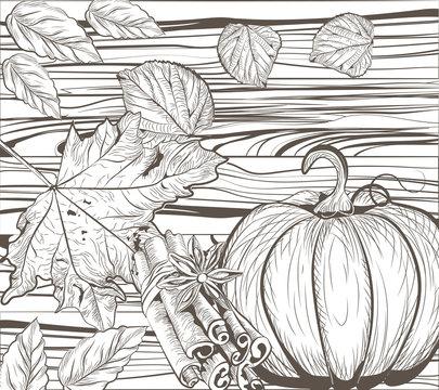 Pumpkin Autumn Vintage card background. Autumnal leaves on Wood background. Vector hand drawn engraved technique. Retro Season Flavors