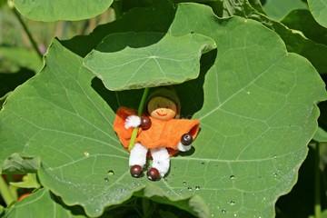 Kleiner Wichtel mit Regenschirm sitzt auf Blatt der Kapuzinerkresse