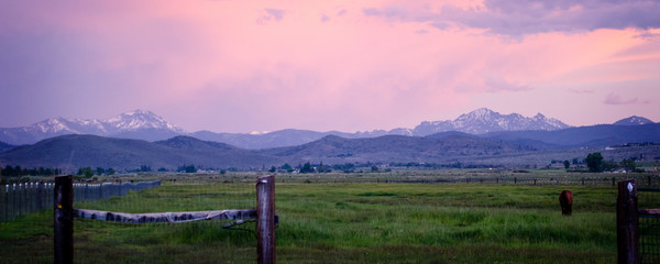 Photo on textile frame Light pink Carson Valley