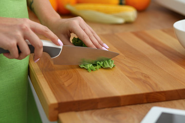 Closeup of woman hands cooking vegetables salad in kitchen. Healthy meal and vegetarian concept.
