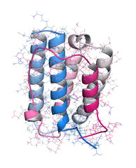Interferon alpha 2a (IFNA2) molecule, 3D rendering.