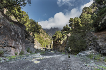 Canyon of fear la palma