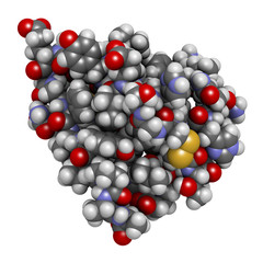 Insulin peptide hormone, 3D rendering. Important drug in treatment of diabetes.