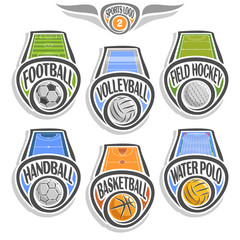 Vector set sports logo with ball, football soccer, volleyball court, field hockey, handball stadium, basketball arena, water polo pool, abstract sign sporting club, icon games balls isolated on white.