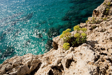 Stone cliff in a beautiful blue sea Cyprus