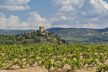 Castello di Argiano