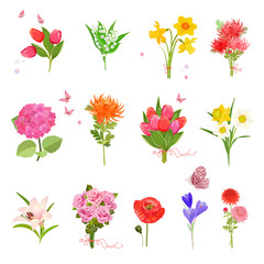 finely collection with different bouquet of lovely flowers for y