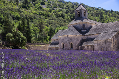 kloster und lavendel in frankreich stock photo and royalty free images on pic. Black Bedroom Furniture Sets. Home Design Ideas