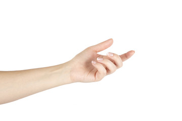 Woman's hand on a white background. Isolated.