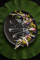 Mix edible flower salad on lotus leaf.