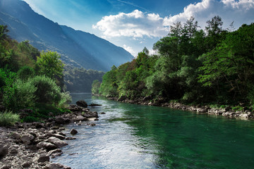 Foto op Aluminium Rivier Mountain clear river and green forest, nature landscape