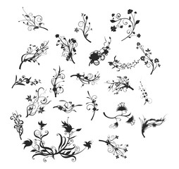 Hand Drawn Floral Spiral Abstract Vector Silhouette Sets