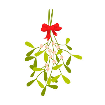 Mistletoe branches tied with red bow Christmas vector icon. Holiday traditional plant symbol for decor.