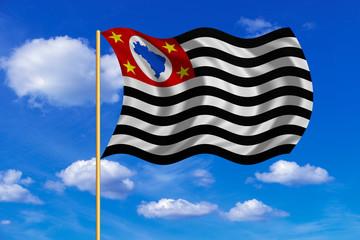 Sao Paulo, Brazil state, flag on flagpole waving