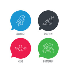 Colored speech bubbles. Jellyfish, crab and dolphin icons. Butterfly linear sign. Flat web buttons with linear icons. Vector