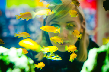 Young blonde woman looking through a window on the life of aquarium fish. aquarium cichlid exotic fish. a flock of beautiful fish swimming in an aquarium.
